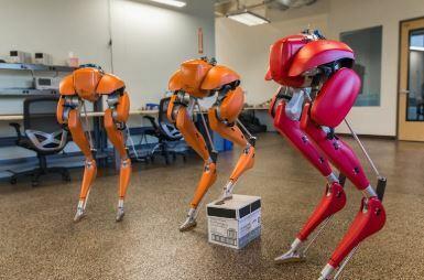 Agility Robotics utiliza Inteligencia Artificial para sus robots